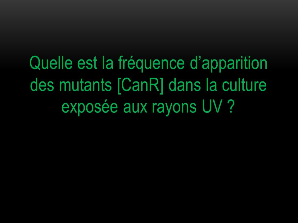 Quelle est la fréquence d'apparition des mutants [CanR] dans la culture exposée aux rayons UV